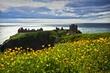 Donnottar Castle.jpg