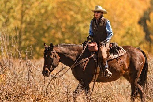Horsewoman.jpg