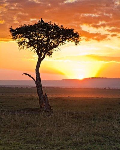 Mara Sunrise.jpg