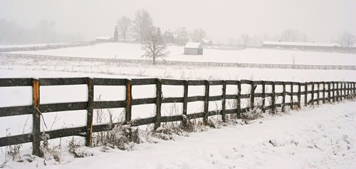 Winters Blanket1.jpg
