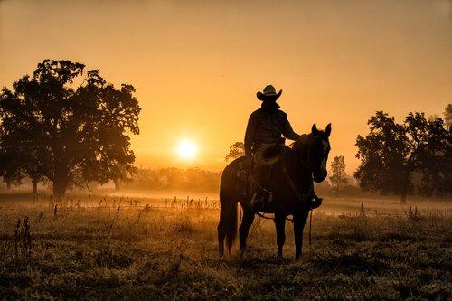 Cowboy Dawn.jpg
