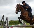 Equestrian-3.jpg