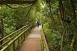 Iguazu_003.jpg