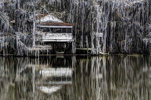 Caddo_Lake-1-Edit.jpg