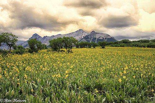 Colorado14-141-Edit.jpg