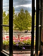 Montreal Window 2.jpg