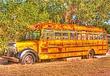 Old School Bus.jpg