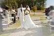 wedding 0821.jpg