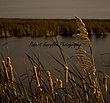Oak Hammock Marsh 2.jpg