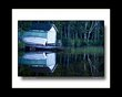 Rice Lake Reflections-1.jpg