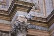 01-Venice-Pigeon - San Marco Bell Tower (3107).jpg