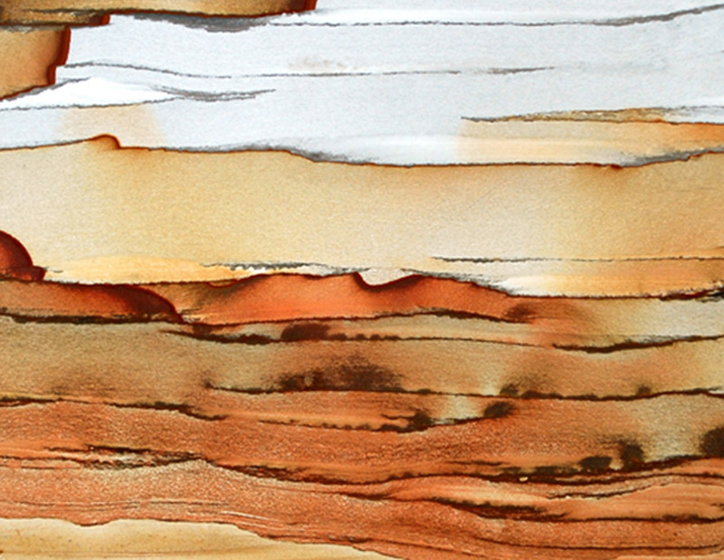 Desert Sunset.jpg :: Sunset landscape in the desert found in Owyhee Sunset Jasper from the Oregon/Idaho border.