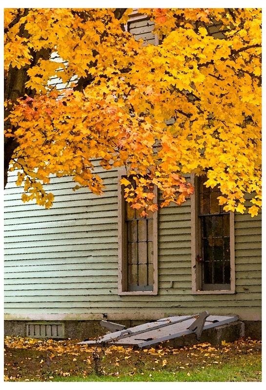 Autumn-watercolor.jpg