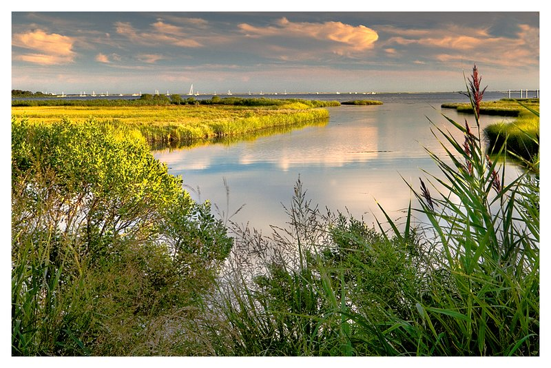 Barn Island.jpg :: Pawcatuck - Late-day clouds are reflected in one of the many coves at Barn Island