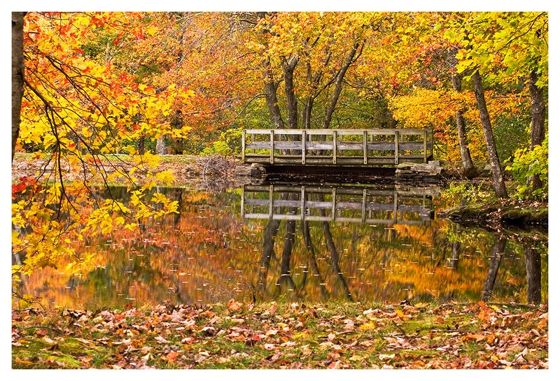 Footbridge-in-Autumn.jpg