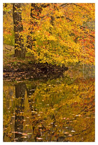 Autumn-in-New-England.jpg