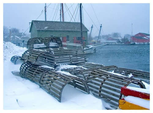 Snow-Covered-Lobster-Pots.jpg