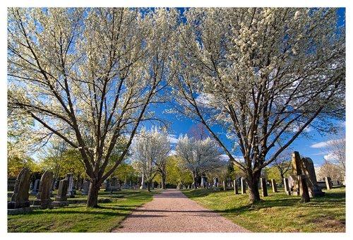 Spring-DayStonington-Cemetery.jpg
