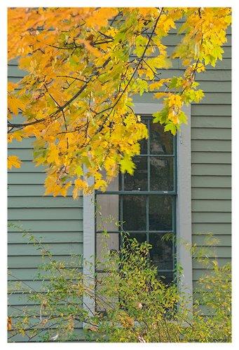 A-Window-in-Autumn.jpg
