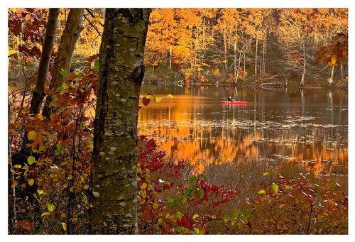Lantern Hill Pond-fall1.jpg