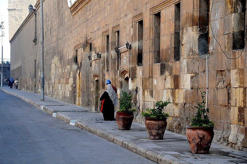 Cairo Citedal (3) W.jpg