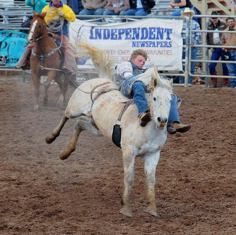 Hang on Cowboy.jpg