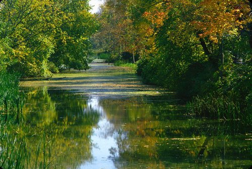 Canal Wainfleet Niagara W.jpg