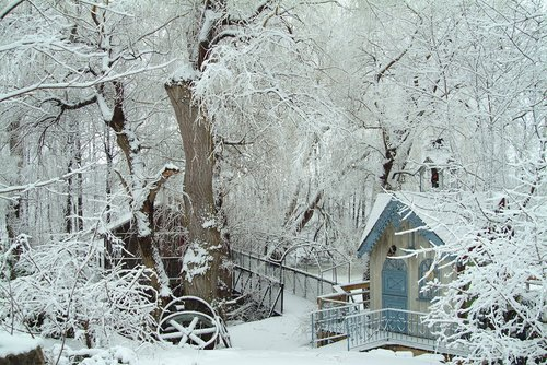 Millpond Winter Scene Niagara W.jpg