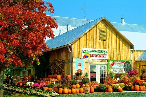 Schwenkers Farm Market W.jpg