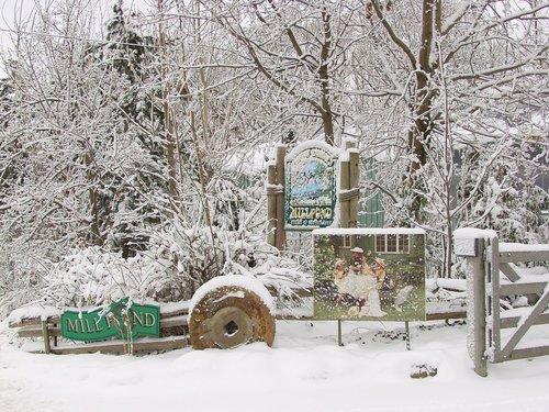 Winter at Millpond Niagara (3A) W.jpg