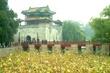 China (4).jpg