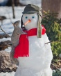 Snowman_00100.jpg