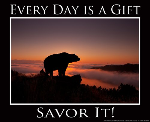 Every Day is a gift Poster.jpg