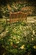 2009 garden (3)1.jpg