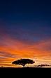 Keek Sunrise portrait sRGB.jpg