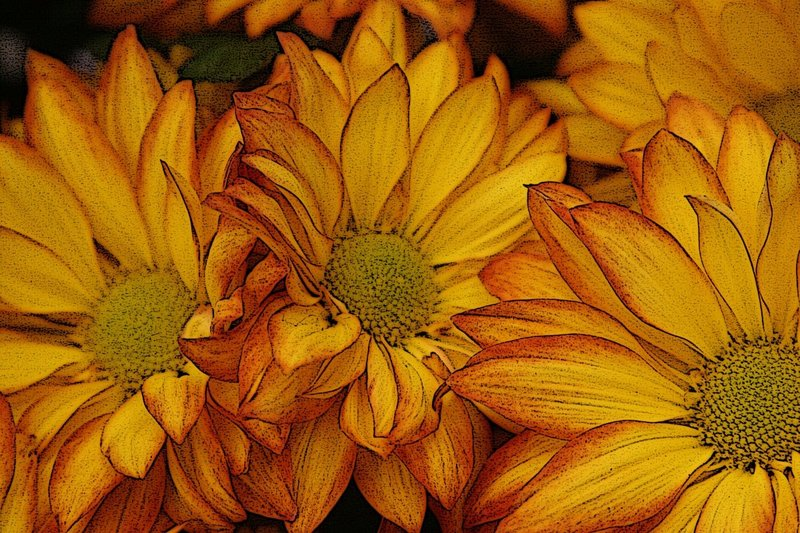 8574-Fabulous Fall Flowers- W.jpg