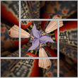1 image split into 5 segments.jpg