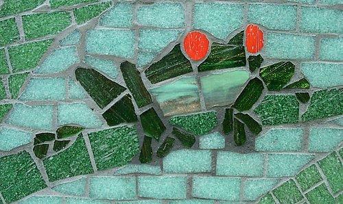 detail of tree frog.jpg