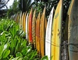 The Surfboard Fence.jpg