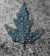 leafwater.jpg
