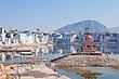 AngelBurns_101223_India_CF10_6563.jpg