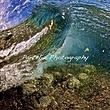 Wave_004.jpg