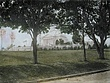 Arlington Amphitheatre.jpg