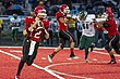 Orchard Lake St. Marys vs. Cass Tech 2.jpg