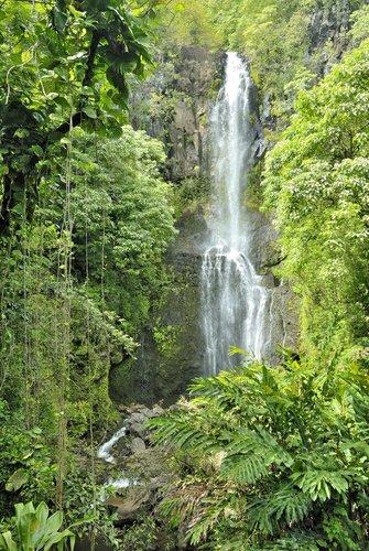 Maui_003.jpg