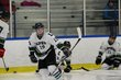 Lapeer Lightning Hockey 1 023.jpg
