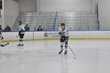 LAPEER HOCKEY 1-16 A 025.jpg