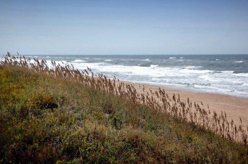 Beach Nags Head N.C..jpg