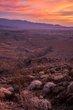 Sunrise Canyon Anza Borrego 2014.jpg