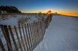 20140103-HamSP_Snow_Owl5354-0005.jpg